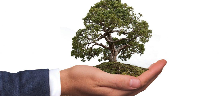 Betrieblicher Umweltschutz